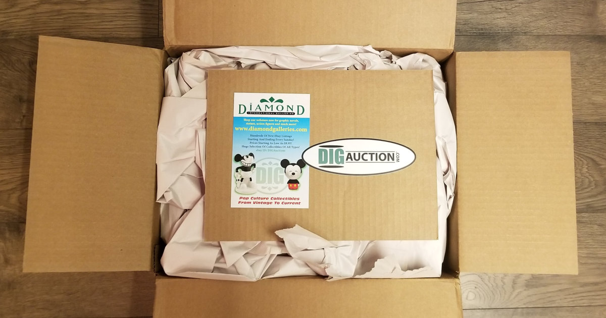 DIG Auctions Shipping Box
