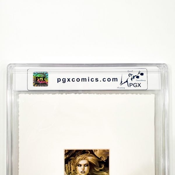 Witchblade #60 PGX 9.8 NM/M Museum Edition Back Label